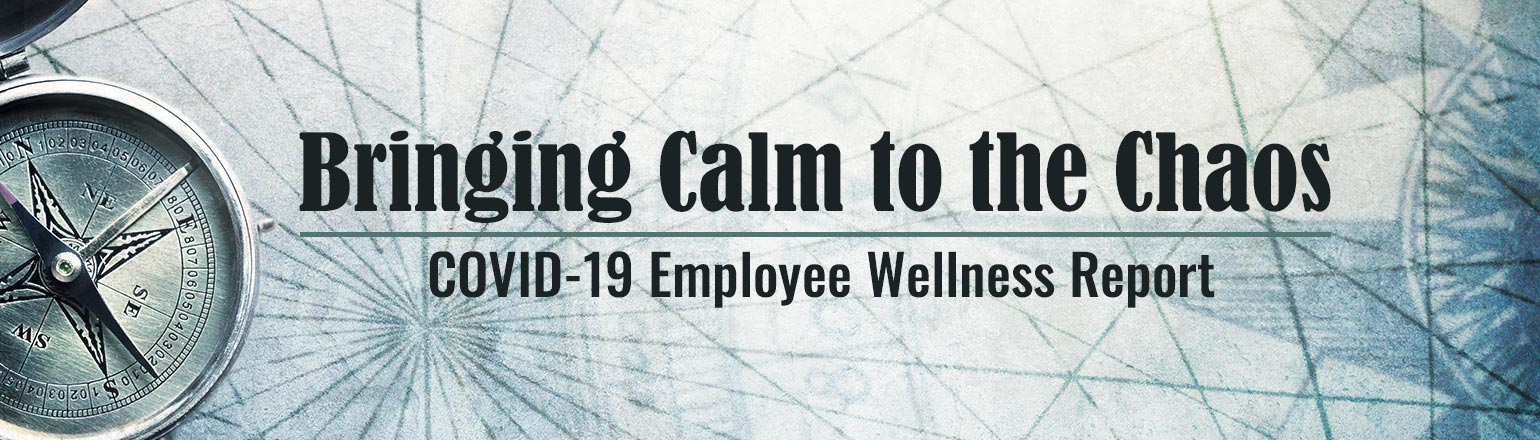 Employee Wellness Report